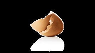 bir yumurta