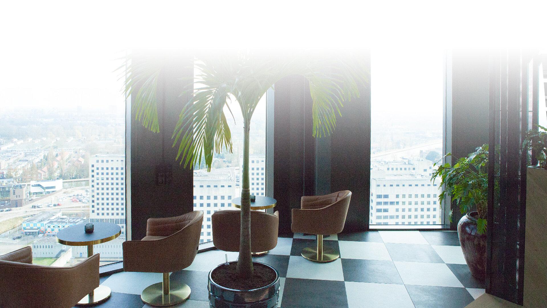 Vista desde el salón del hotel QO