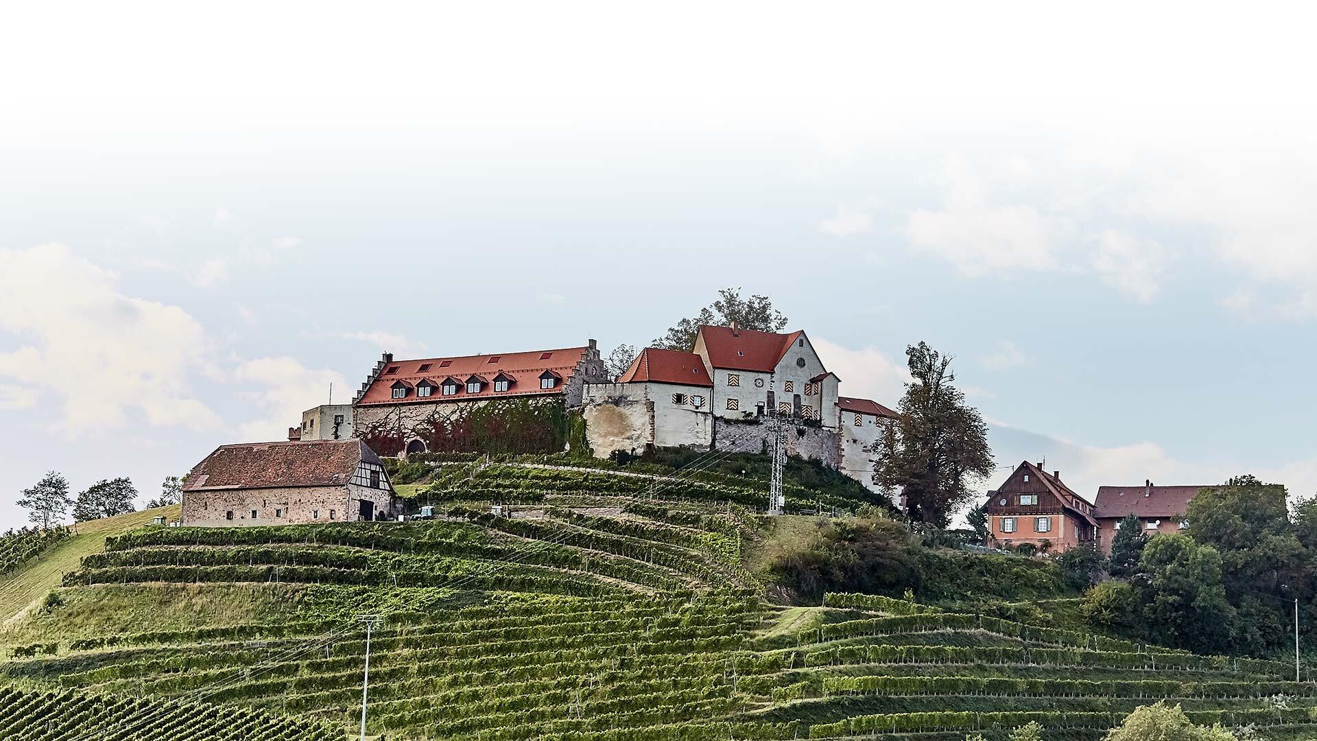 MEIKO Staufenberg Castle
