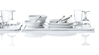 tray dishes